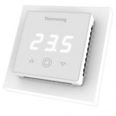 Терморегулятор Thermoreg TI 300 (цифровой)